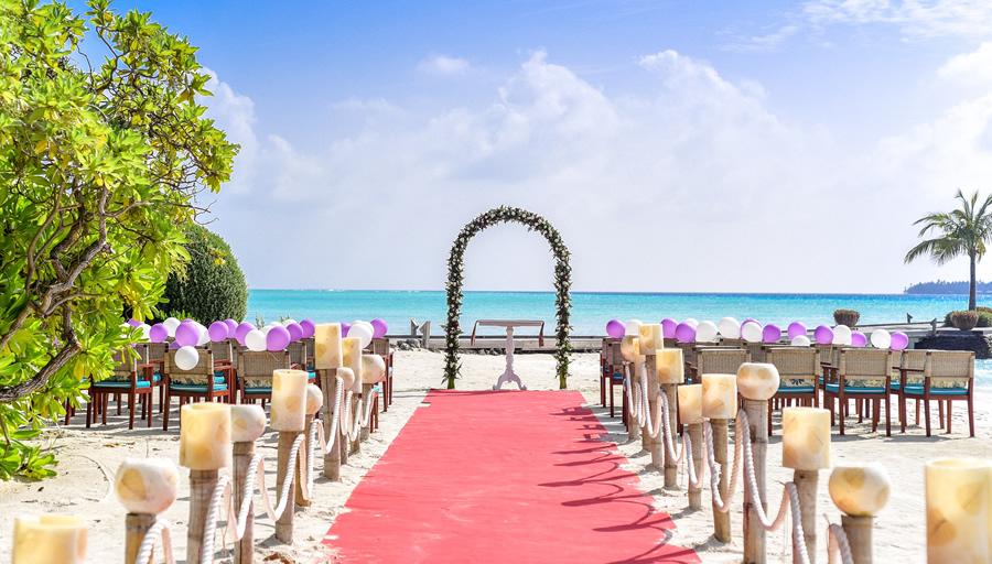 結婚式には安心して集積するために婚約者の調査 ※写真はイメージです